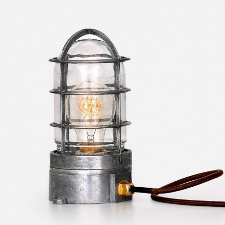 STEAMPUNK CAGE GLASS EDISON
